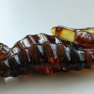 Dominican Blue Amber Exquisitely Designed Handmade Seahorse Carving OT6210 RRP£1200!!!