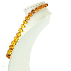 German Genuine Amber Beads with Insects Natural Museum of London Verified - A0373 RRP£8500!!!
