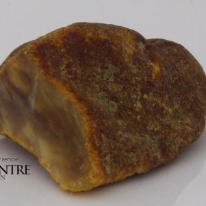 German BUTTERSCOTCH RAW UNPOLISHED BALTIC AMBER PIECE 11.3 GRAMS-RS044 RRP£95!!!